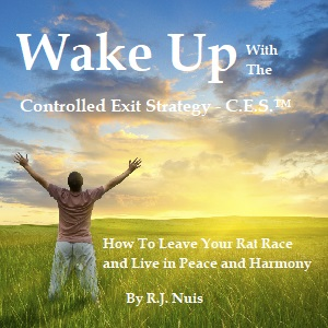 Wake up E-Book by RJ Nuis conscious living coaching